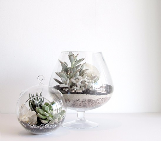 "By The Archive Gallery  Small Sphere Terrarium and ""Wine Glass"" Terrarium"