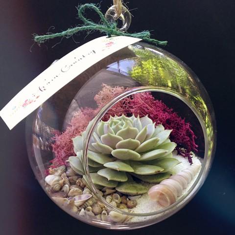 Small Sphere Terrarium