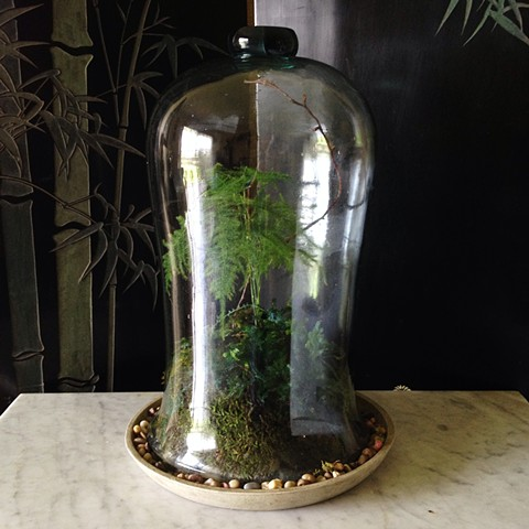Custom Glass Bell Terrarium