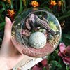 Medium Satellite Terrarium