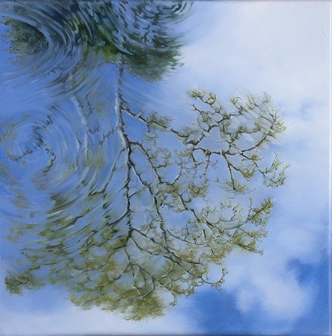 Reflection of cypress tree in water