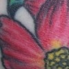Flowers Tattoo by Little Chico 2006