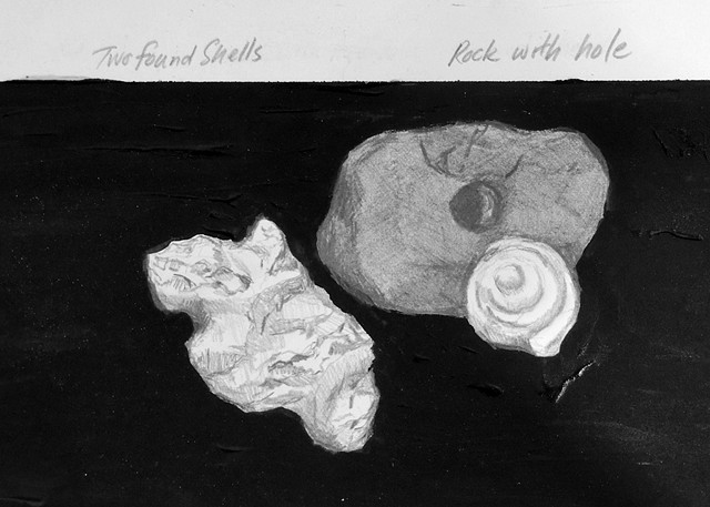 shells and holed rock