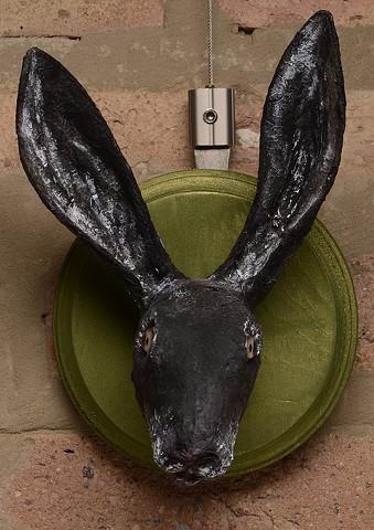 Black Hare portrait