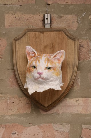 Kitty Portrait
