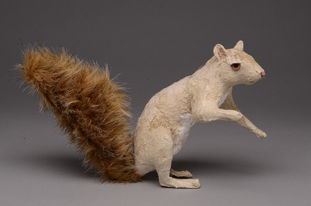 Long Arm Squirrel (side view)