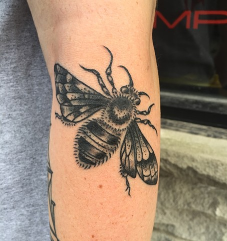Blackwork Bee tattoo by Cassandra Knox