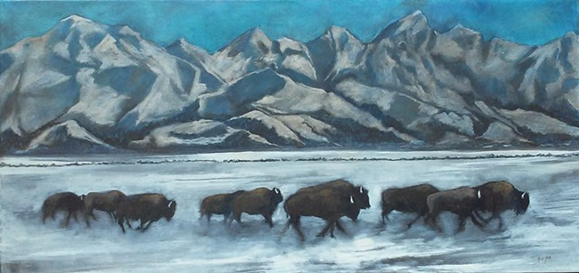 Buffalo at Jackson Hole
