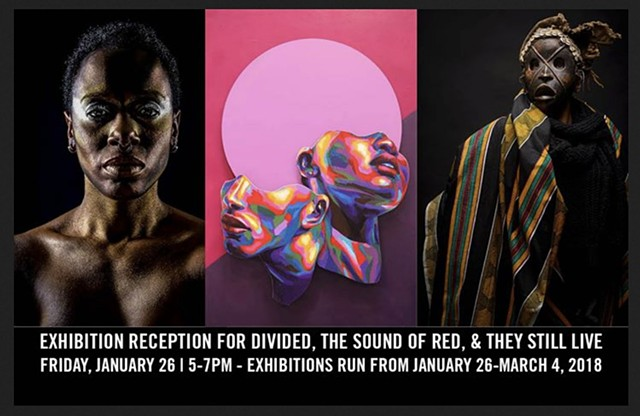 "2018 - Group Exhibition, ""Divided: Race and Identity in Modern America"""