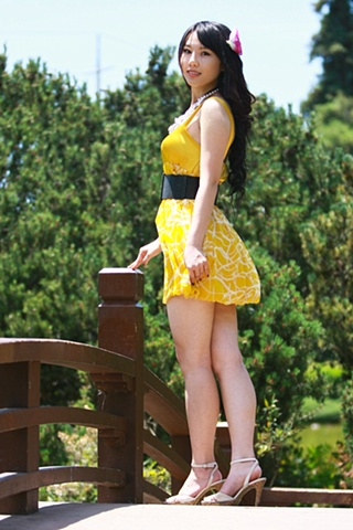 The Yellow Dress 2