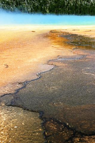 Yellowstone #5