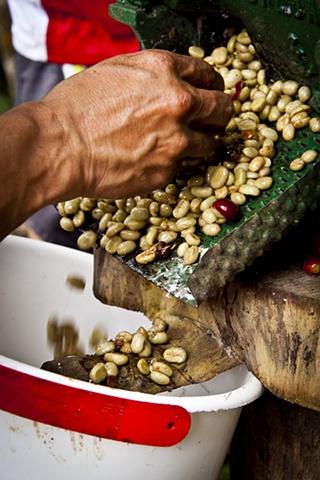 salento (Coffee Region) Colombia, S.A