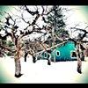Dana's Cabin