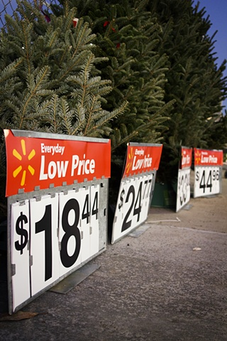 Day Before Black Friday, Low Price Christmas Trees