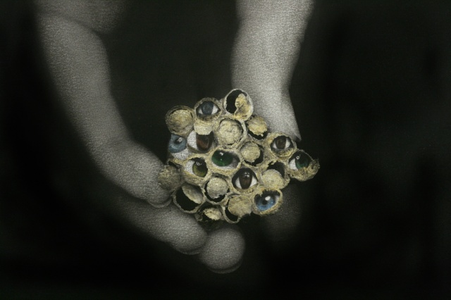 "Detail of ""Eyespots (A Method of Defense)"""