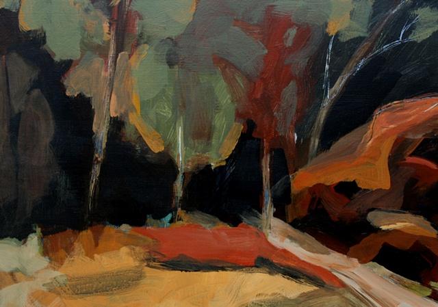 Woods & Rocks