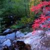 Fall in Jerome, AZ