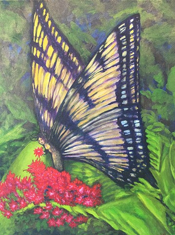 Madame Butterfly by Lisa Wright