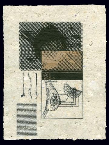 Document 3 (Spine)