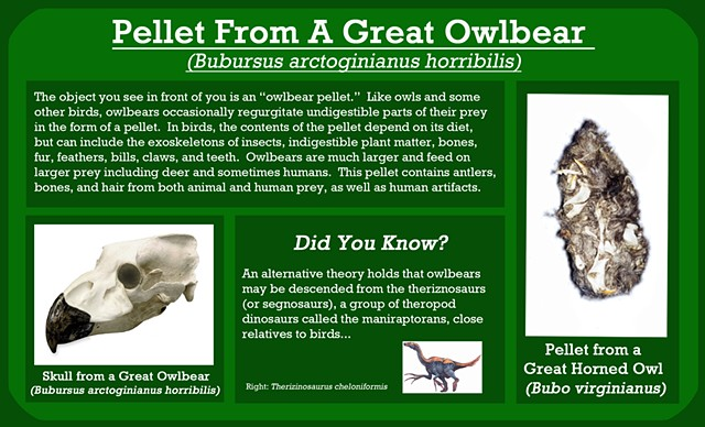 Owlbear Pellet (detail of interpretive signage)