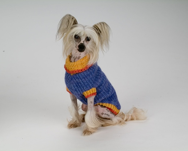 hand made dog sweater