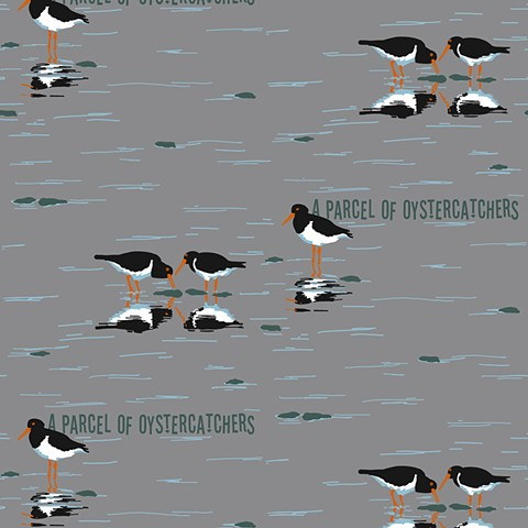 parcel of oystercatchers [cloud]