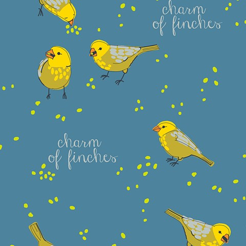 charm of finches [kale]