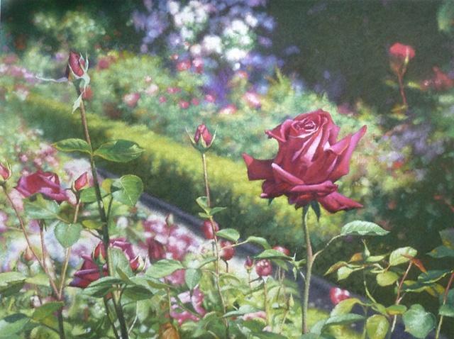 Filoli in Bloom