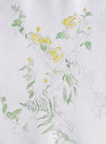 mysterious yellow roses and ferns