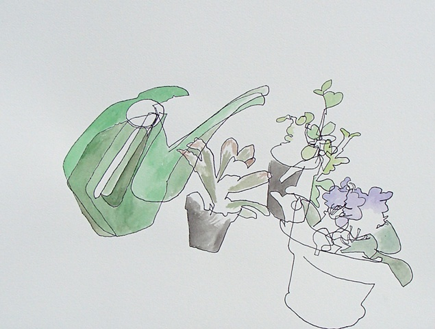 watering can and house plants