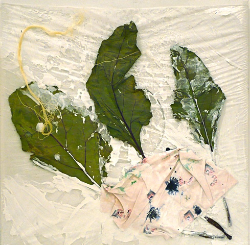 LP Collage