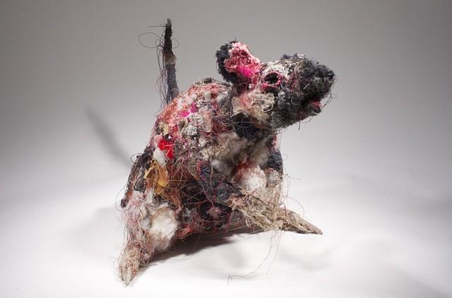 Rat #11