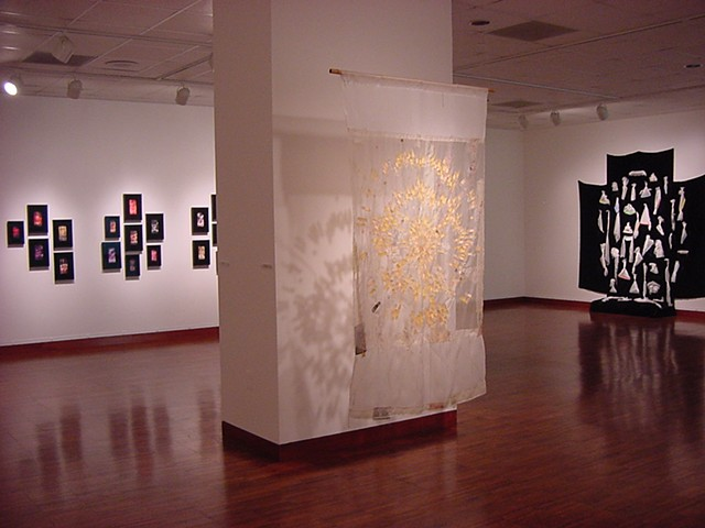 Installation view: Band-aid Mandala; Retired Combs (from the Weintraub Collection); 40 Waterfalls for Them; Weston Art Gallery