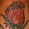 rose forearm