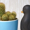 PENGUIN PLANTER