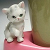 CAT WITH WISKERS AND CUP