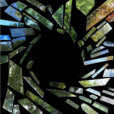 Laura Mackin J. G. Ballard The Crystal World mirrors found appropriation art