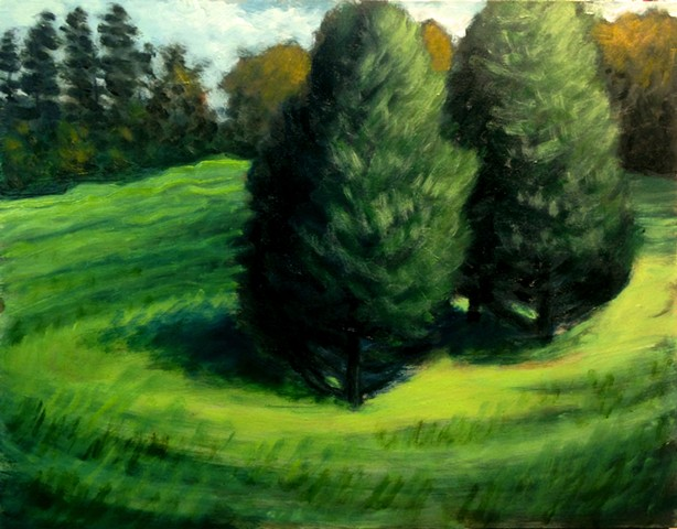 Cedars in the Field
