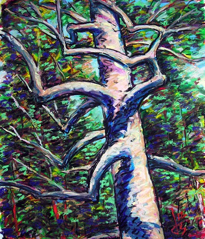 Twisting Tree - SOLD