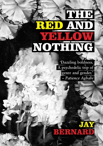 The Red and Yellow Nothing, 2016. Shortlisted for the Ted Hughes Award 2017