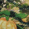 Pumpkins (after JM Coetzee)