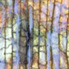 Microgeographies: Leaf (No. 96)