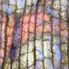 Microgeographies: Leaf (No. 106)