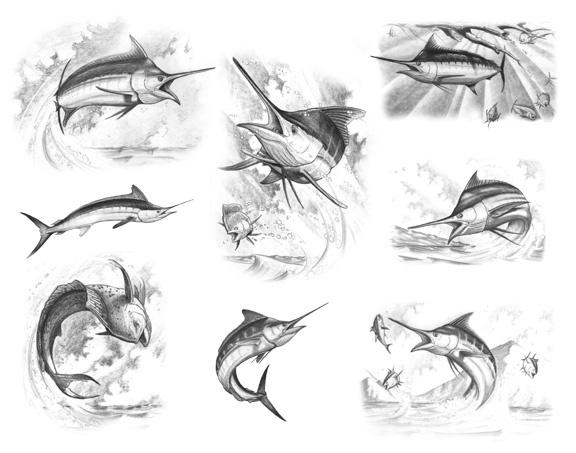 Fish Flash 5