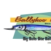 Ballyhoo Baits (JC Penney)