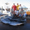 22 Yellowfin