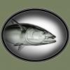 bluefin 350