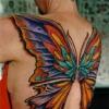 Loach & Vinnie wings