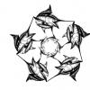 Marlin star 1