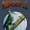 Woodpeckers construction